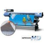 Impresión Vinilo Microperforado /One Vision