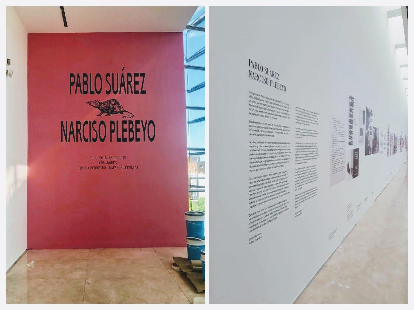 Gráfica para Exposición Pablo Suárez en Malba
