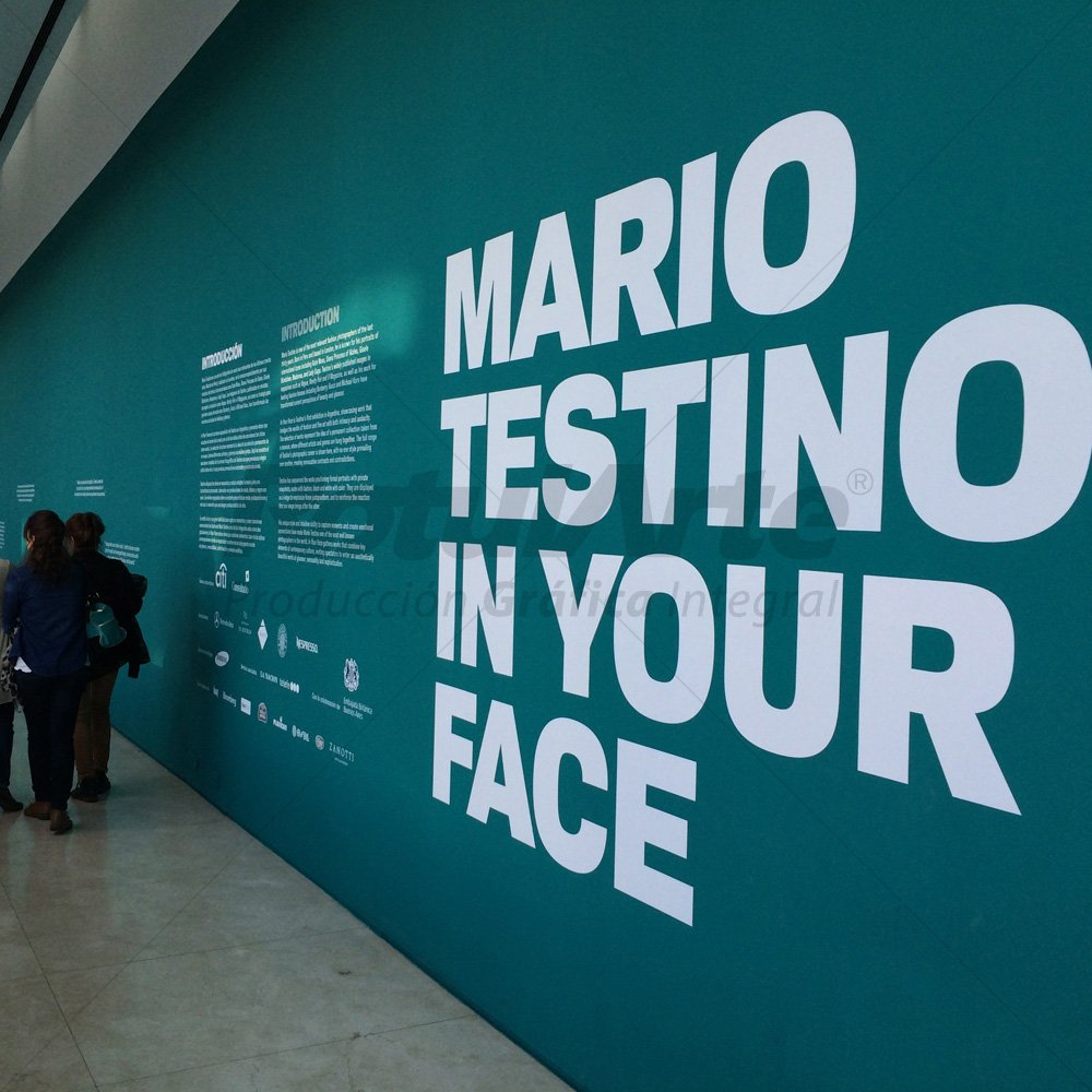 Vinilo de corte para exposiciones - Malba Mario testino
