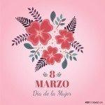 vinilo_ploteo_vidriera_dia_mujer_8_marzo_WO-VIN001